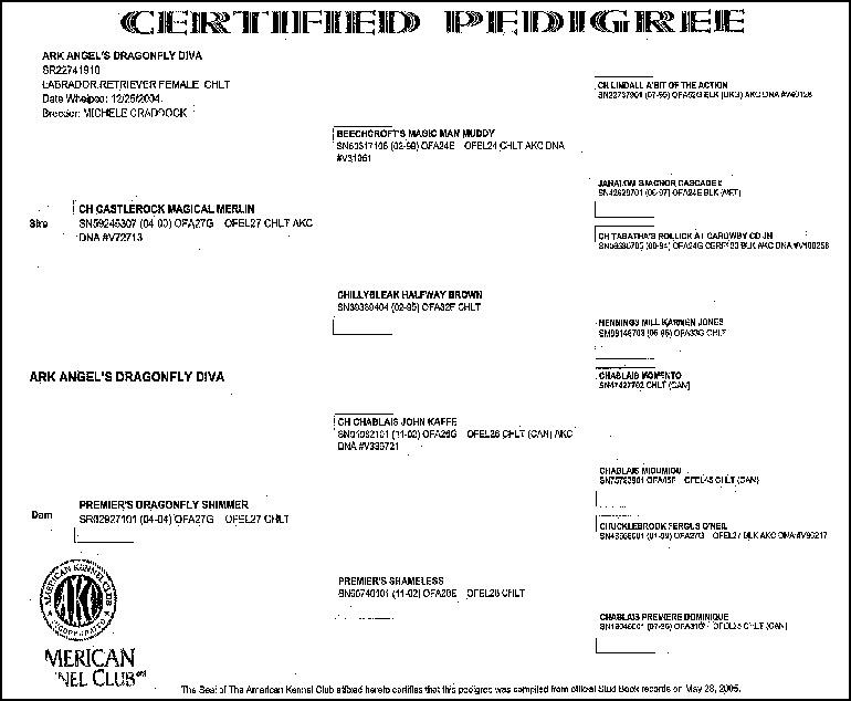 Reba Certificate 2